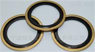 NBR碳鋼進口組合墊圈