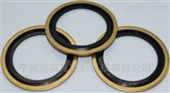 NBR碳钢进口组合垫圈