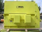 德国MENZEL高压电机
