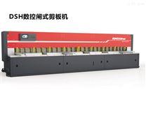 DSH数控闸式剪板机